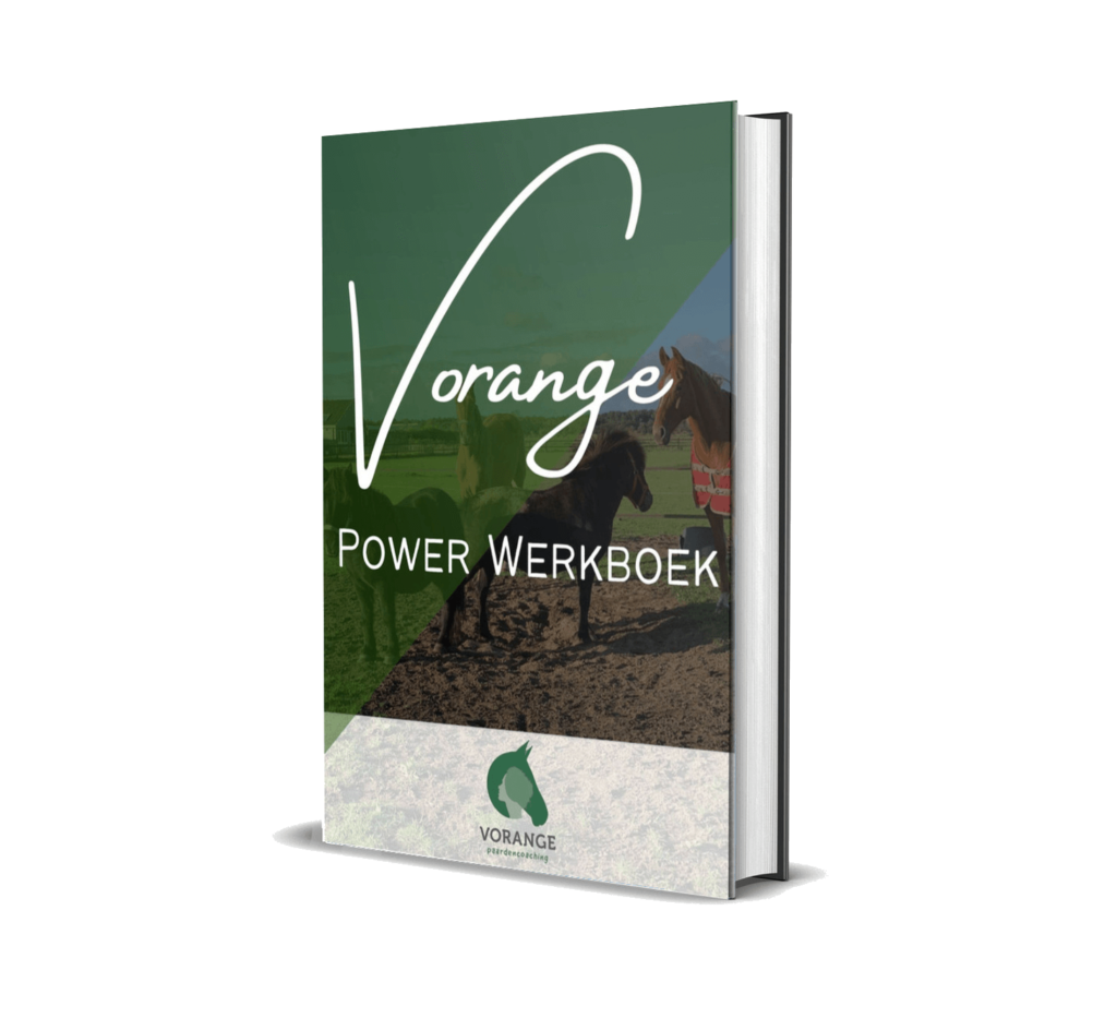 Vorange Power Werkboek