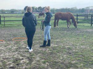 Paardencoaching voor jongeren